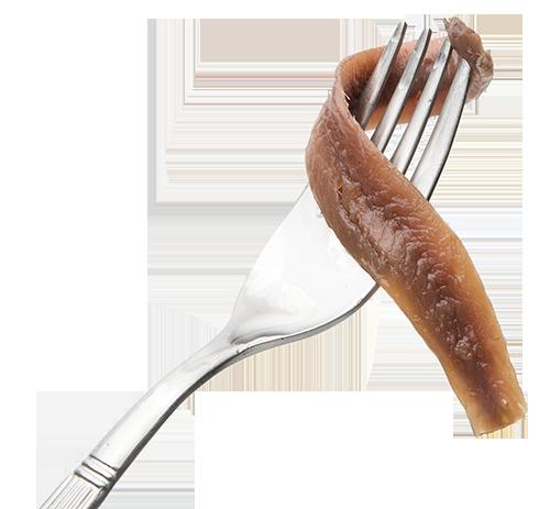 Anchoa del Cantábrico en tenedor
